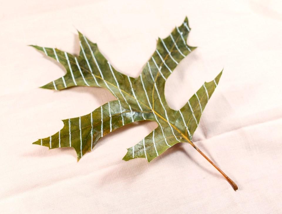 Step 1: Beads Leaf Motif