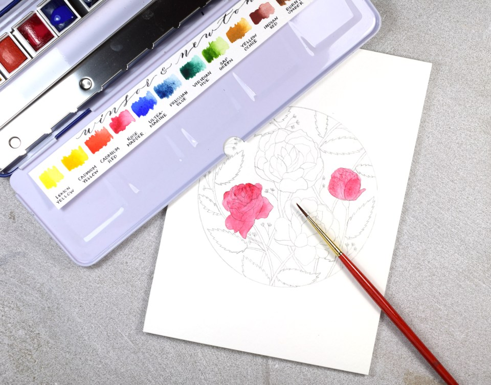 Adding Watercolor to the Flowers Illustratio