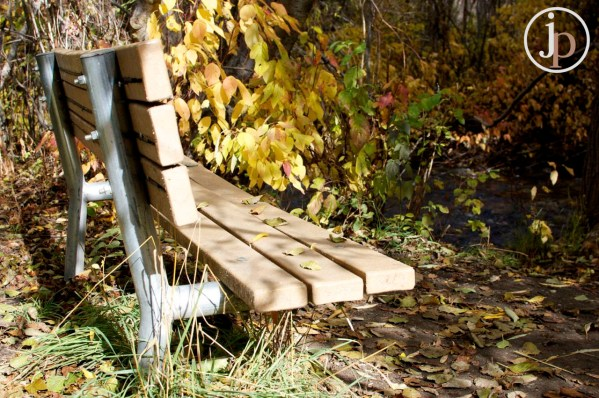 Leafy Bench
