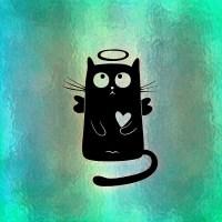 https://pixabay.com/en/cat-halo-funny-cute-heart-1119801/