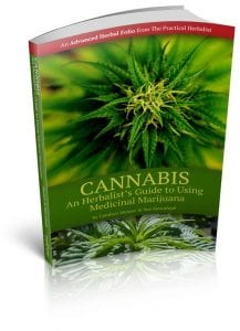 Cannibis-Cover-3D-shadows-576