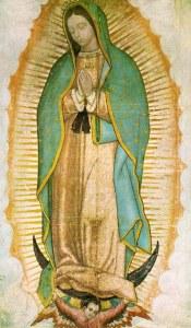 Sacred Plant Medicine in Mexcio