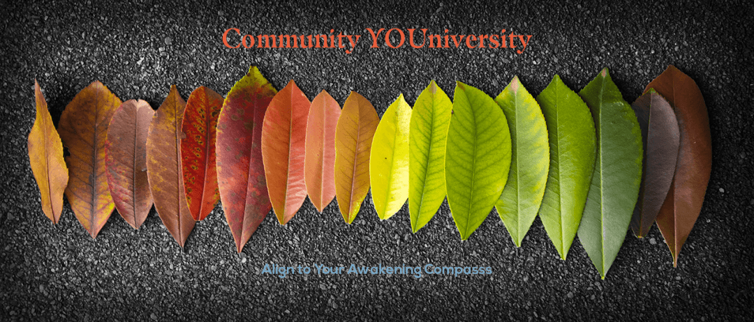 Community YOUniversity Banner