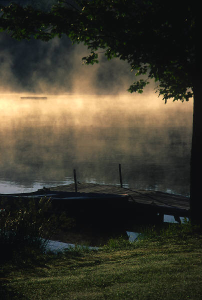 Dock, fog