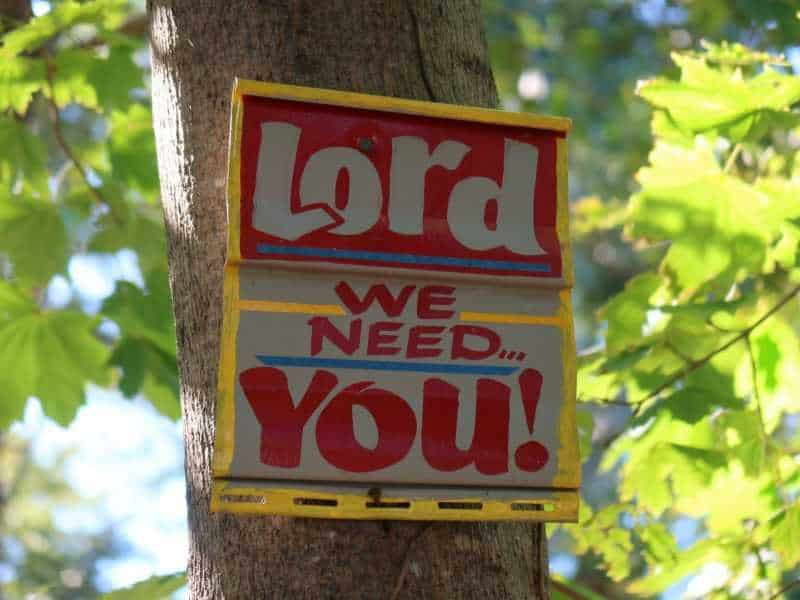 Abiding in the Lord