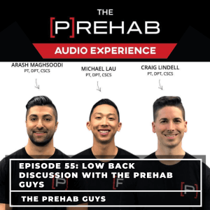 low back discussion the prehab guys fix your pelvic tilt