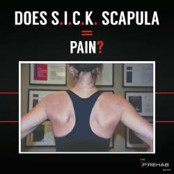 Instagram - Does sick scapula equal pain