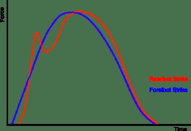 rearfoot vs forefoot strike graph the prehab guys