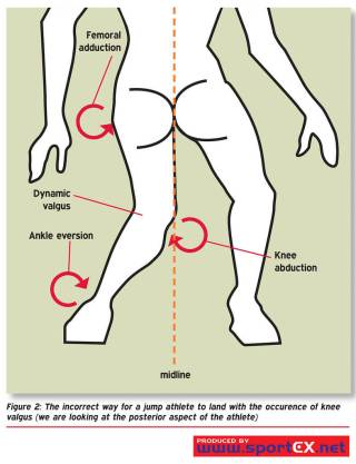 Why Ankle Mobility Matters With ACL Tears