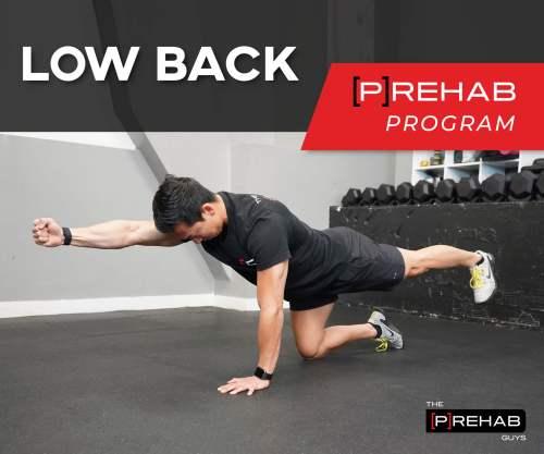 core training program low back the prehab guys
