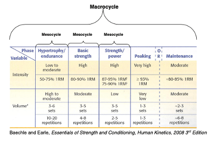 sample periodized program for rep max strength testing the prehab guys