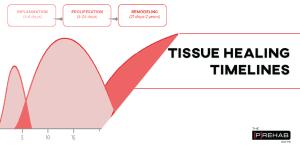 tissue healing important differences betweentendinitis versus tendinosis the prehab guys