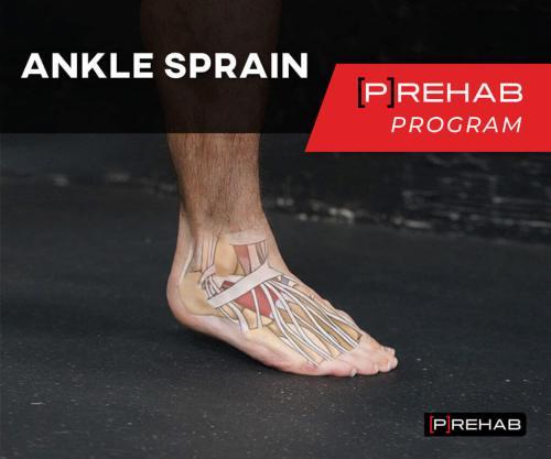 ankle sprain prehab program balance exercises the prehab guys