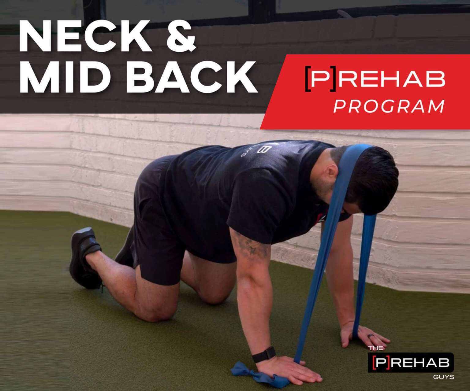 rhomboid pain neck and mid back prehab guys