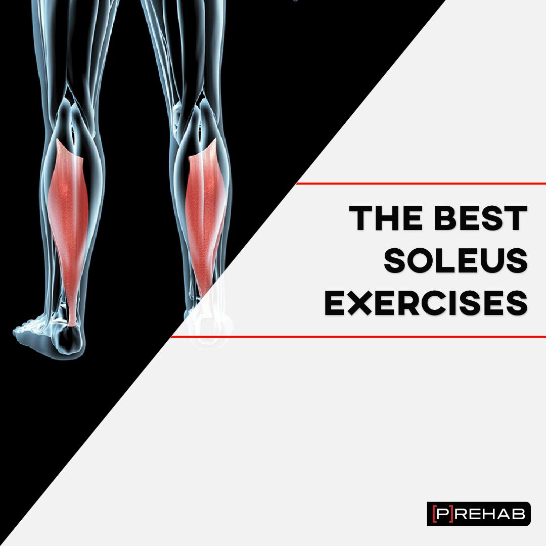 the best soleus exercises the prehab guys