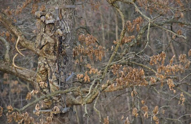 Uh, yep! I think camouflage is very necessary in a survival situation.