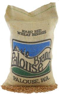 Non-GMO Hard Red Spring Wheat