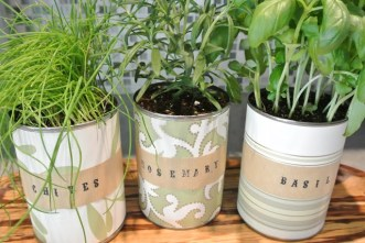 There are lots of positives to growing food in small containers, especially when we can source them for free or very little money and upcycle into production space.