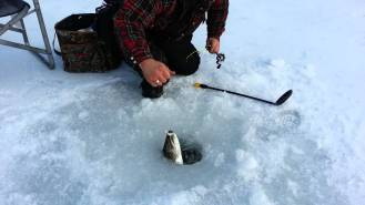 Editors Note: An article from Matt at the SwimBaitZone.comto The Prepper Journal. As always, please check your local regulations on fishing as not all of these methods are allowed everywhere.