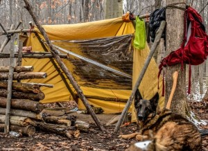 There are all kinds of ways windshield reflectors and space blankets can make life easier and increase our capabilities as preppers, both everyday and during emergencies. Some of the camping and car uses are the most well known, but they don't get applied in our homes and backyards much.
