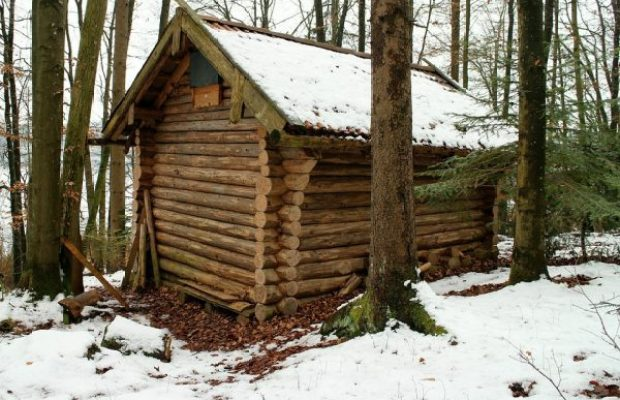 How To Build A Survival Cabin In The Wilderness