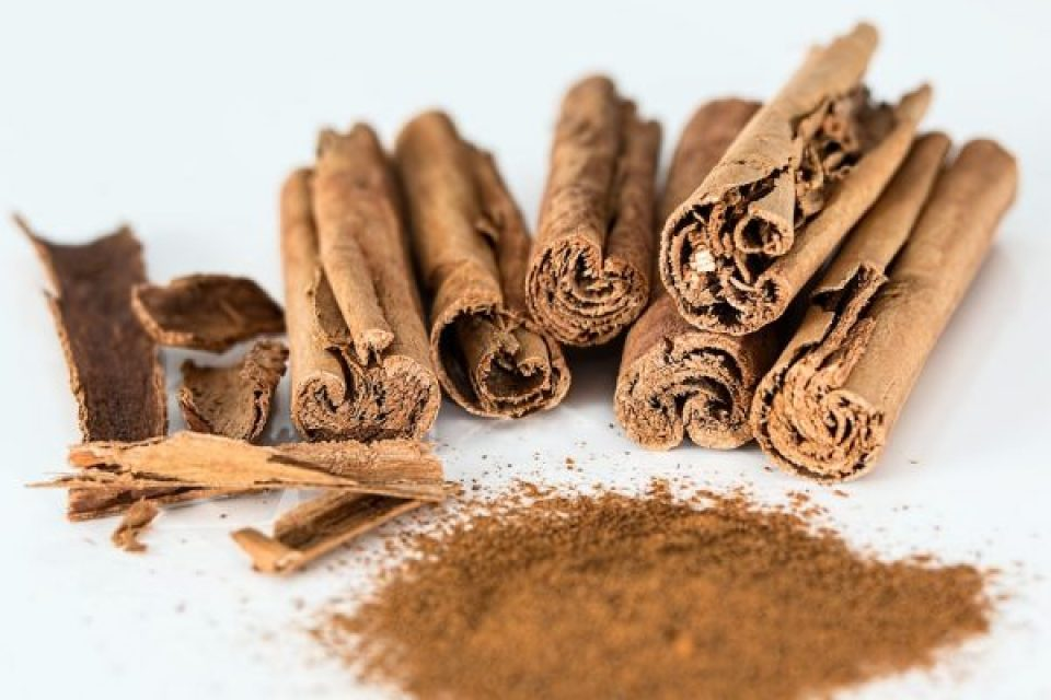 Growing cinnamon and spice health benefits