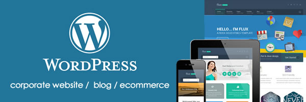WordPress Web Design Training in Ghana.