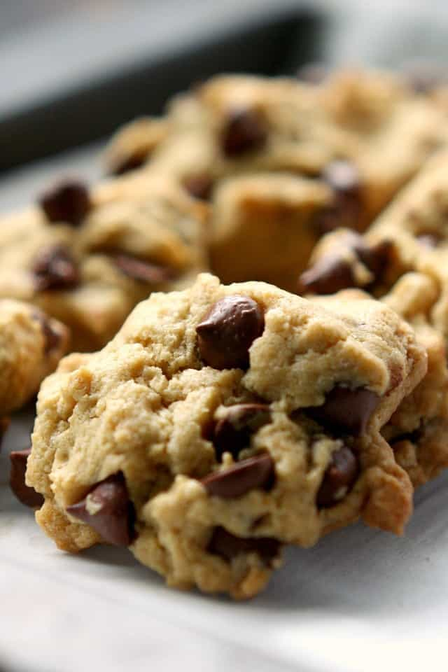 Delicious and chewy gluten free and vegan chocolate chip cookies. This is a recipe the whole family will love!