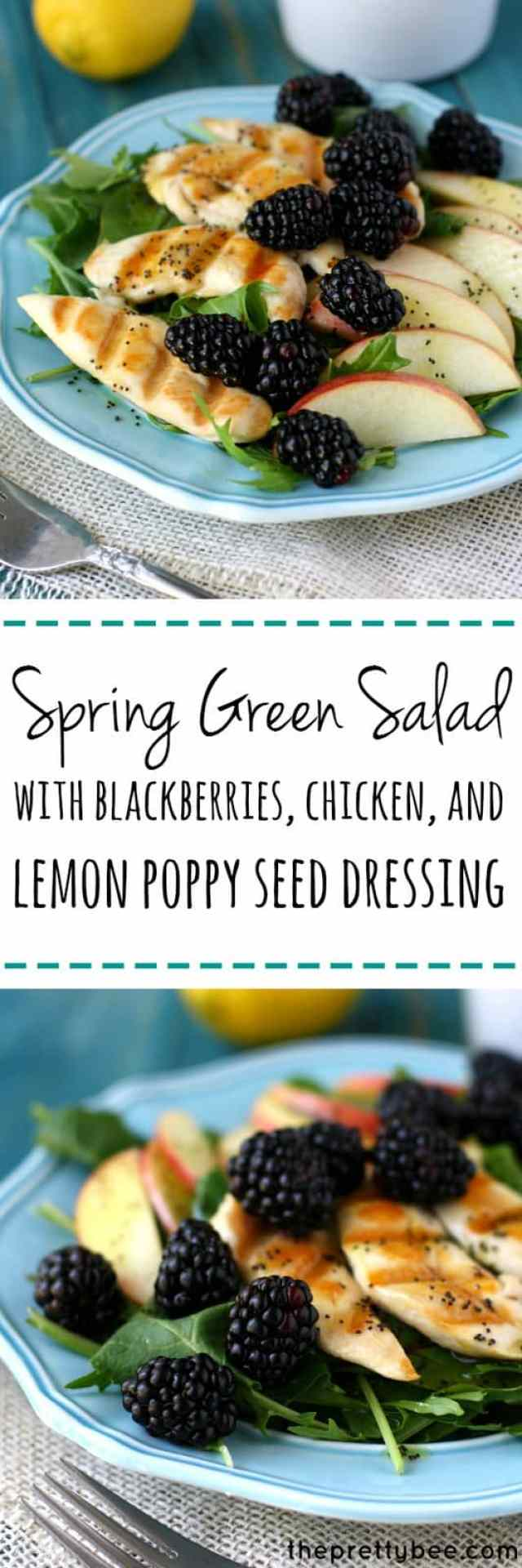 A fresh green salad topped with juicy blackberries, crisp apples, and tender chicken. This salad is finished with a lemon poppy seed dressing that just says spring! @Driscoll's Berries #finestberries AD