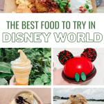 Disney World food