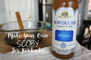 Make Your Own SCOBY for Kombucha