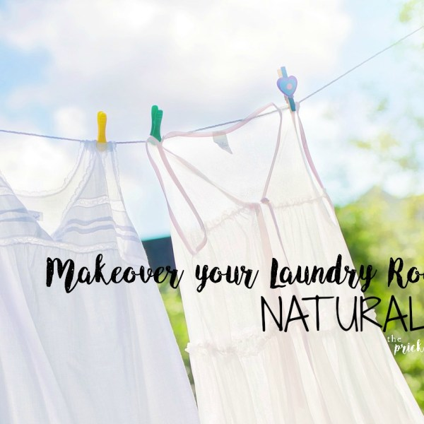 Makeover Your Laundry Room Naturally