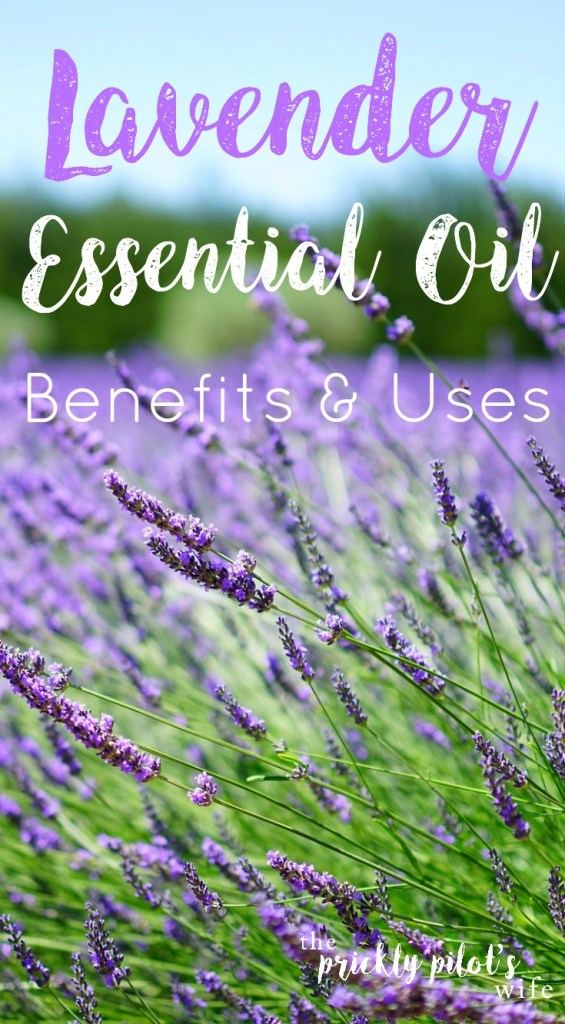 lavender essential oil doterra benefits uses
