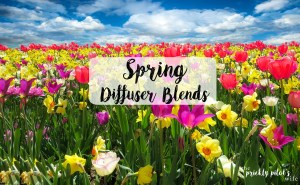 Spring Diffuser Blends – doTERRA Essential Oil