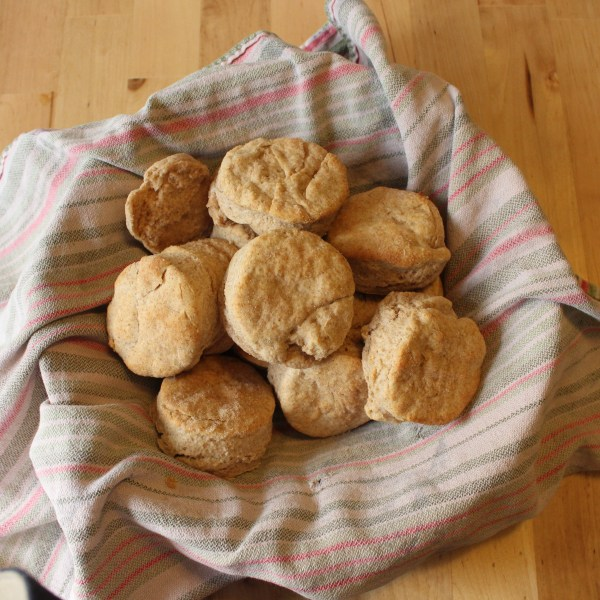 Yummy Whole Wheat Biscuit Recipe