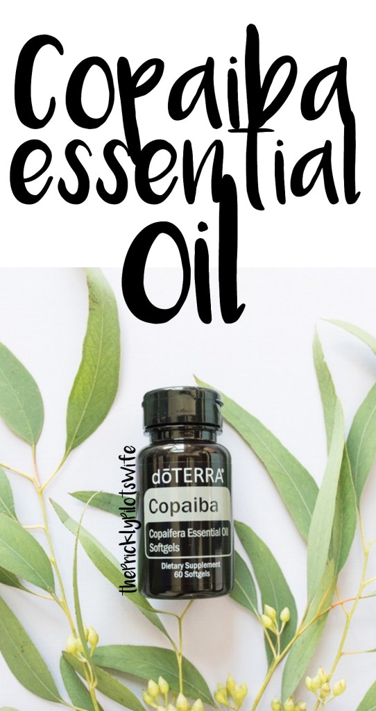 doterra copaiba essential oil uses and benefits