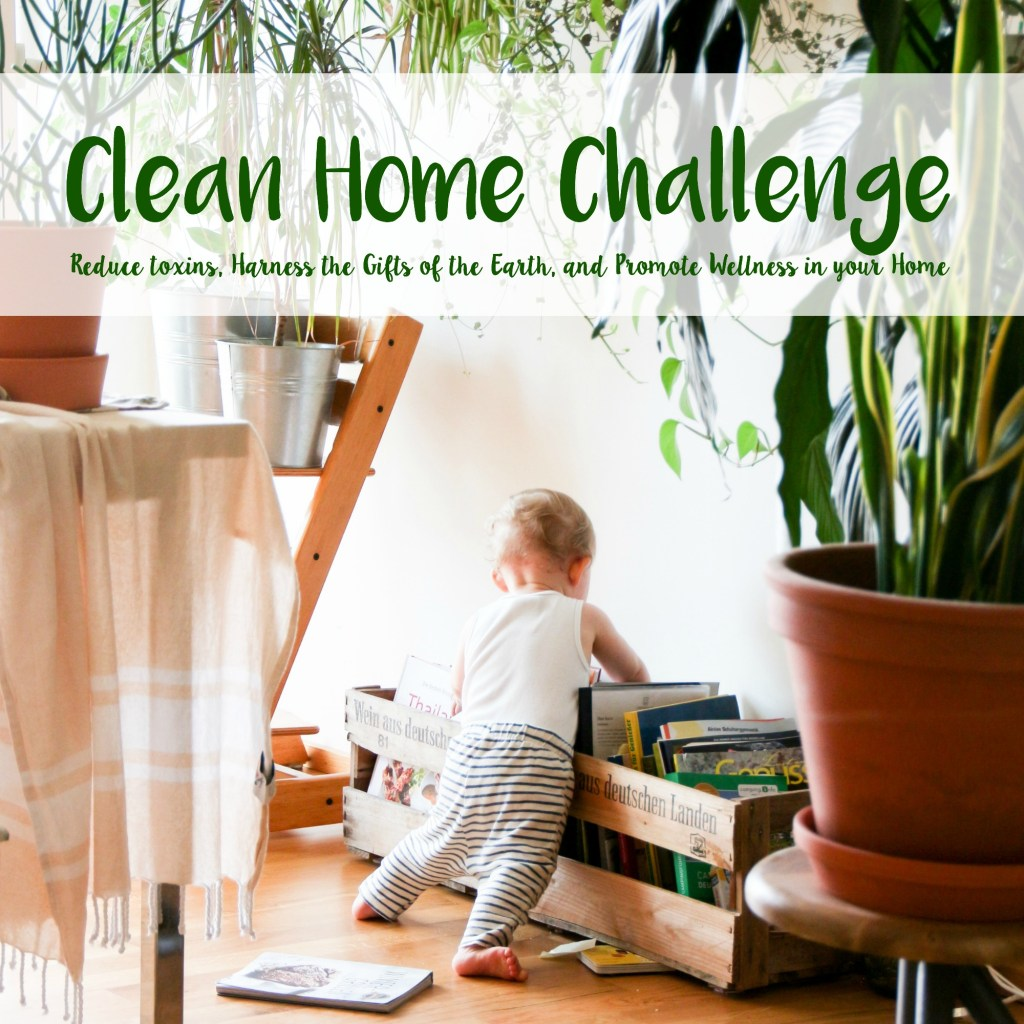 clean home challenge ebook