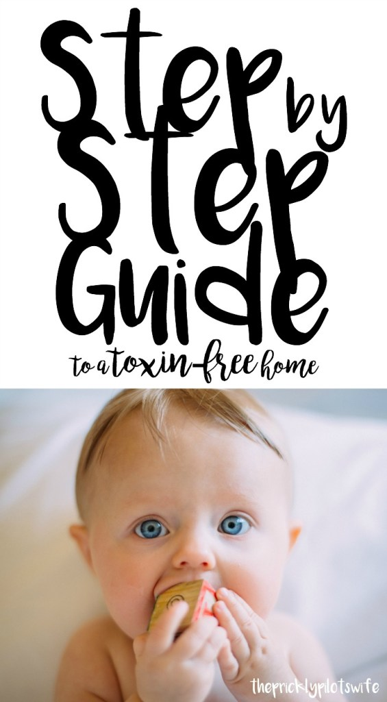 clean home challenge step by step guide to a toxin free home