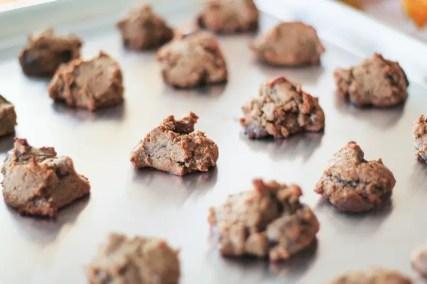 Paleo Chocolate Chip Cookies 03