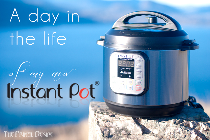 A Day in the Life of Instant Pot - http://theprimaldesire.com/a-day-in-the-life-of-instant-pot/