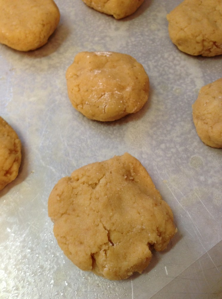 Primal Biscuit Recipe, take 2 (3/4)