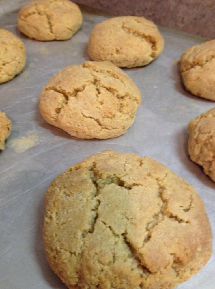 Primal Biscuit Recipe, take 2 (4/4)