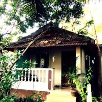 Ashtanga-Yoga-in-Goa-With-Rolf-theprimerose-photography-by-Rosa-Tagliafierro-4918