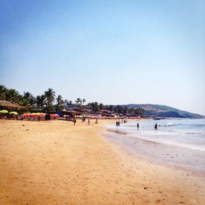 Ashtanga-Yoga-in-Goa-With-Rolf-theprimerose-photography-by-Rosa-Tagliafierro-4923