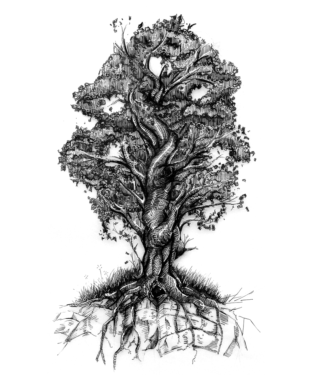 tree of life,Gregory B. Stewart,art,illustration