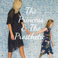 Sneak Peek of The Princess & The Prosthetic eBook cover!