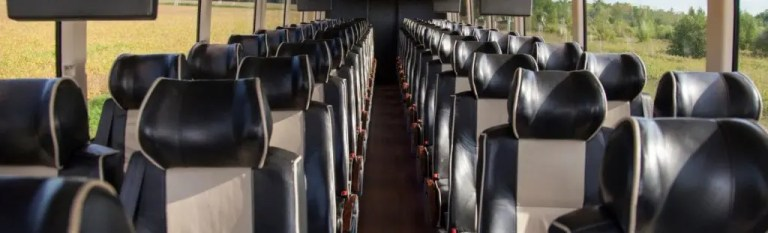 the professional traveller coach holidays coach seating
