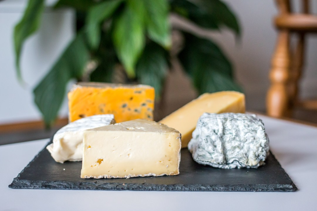 The Cheese Society - The Project Lifestyle
