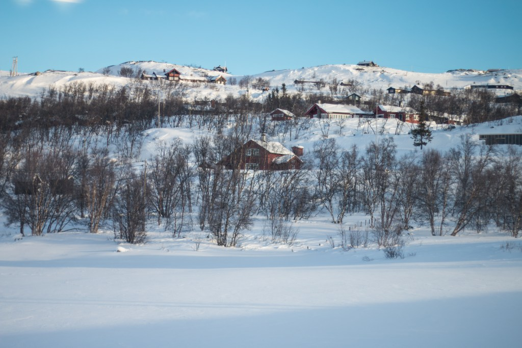 Bergen to Oslo Train - The Project Lifestyle