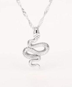 Ασημί κολιέ με κρεμαστό σύμβολο φίδι